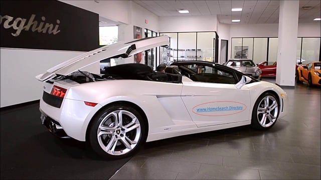 Lamborghini Flaunts It Best Car Polish Car Car Polish