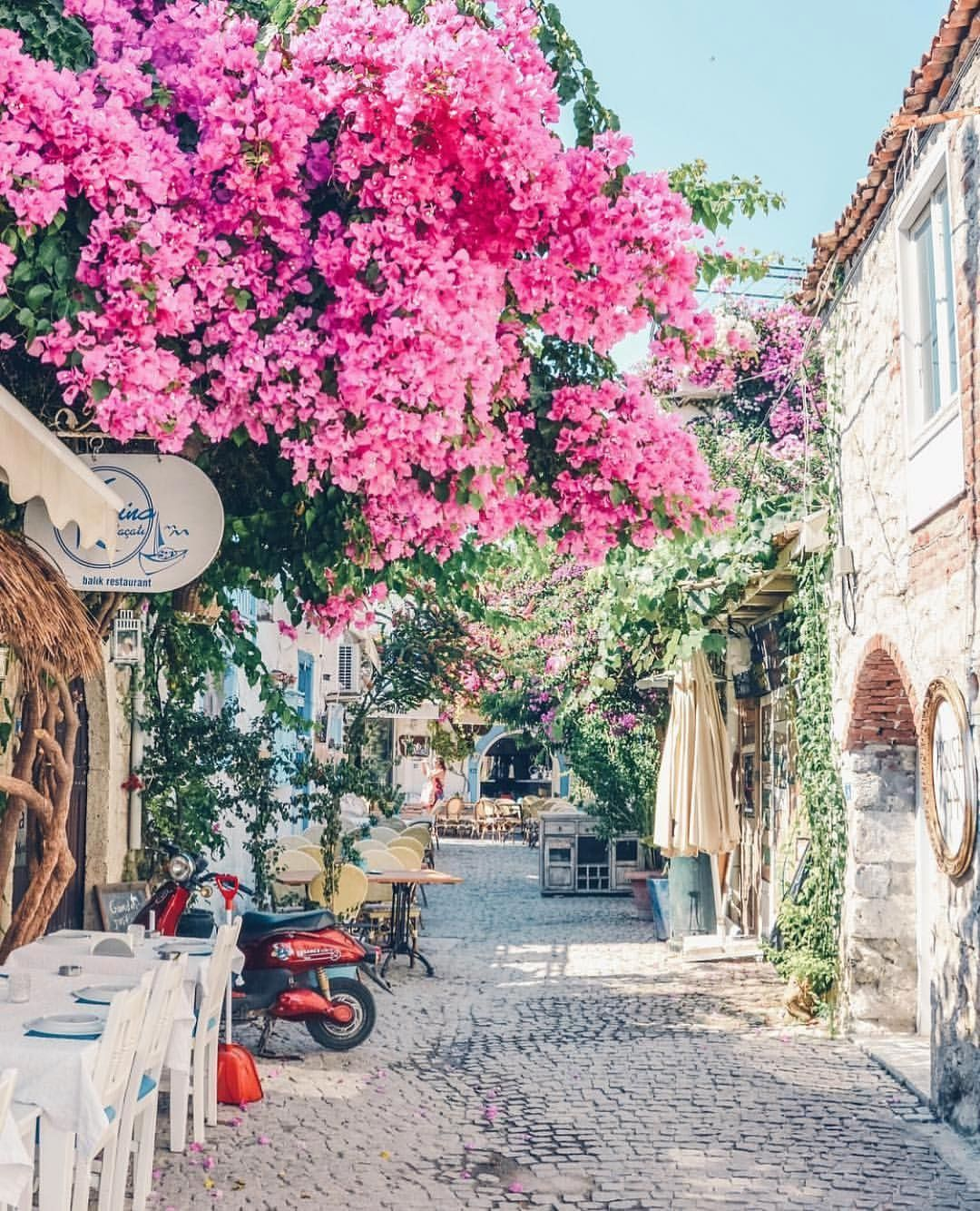 Alacati Turkey 🌺🌺🌺 Picture by iamtravelr .