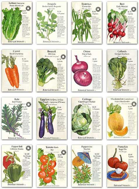 Save Vegetable Seeds In Your Backyard Organic Gardening With