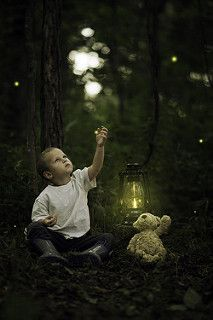 Catching Fireflies Eyes Of Innocence Photography Firefly