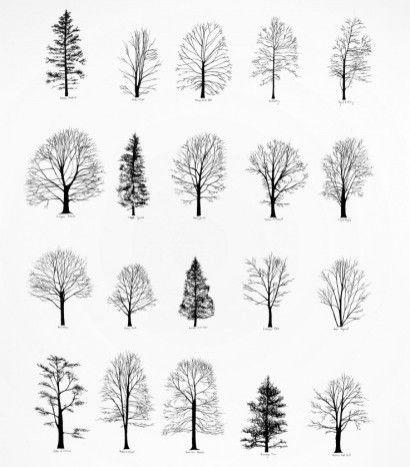 Architecture Drawing Trees graphic design studio & apparel boutiquebathousedesign