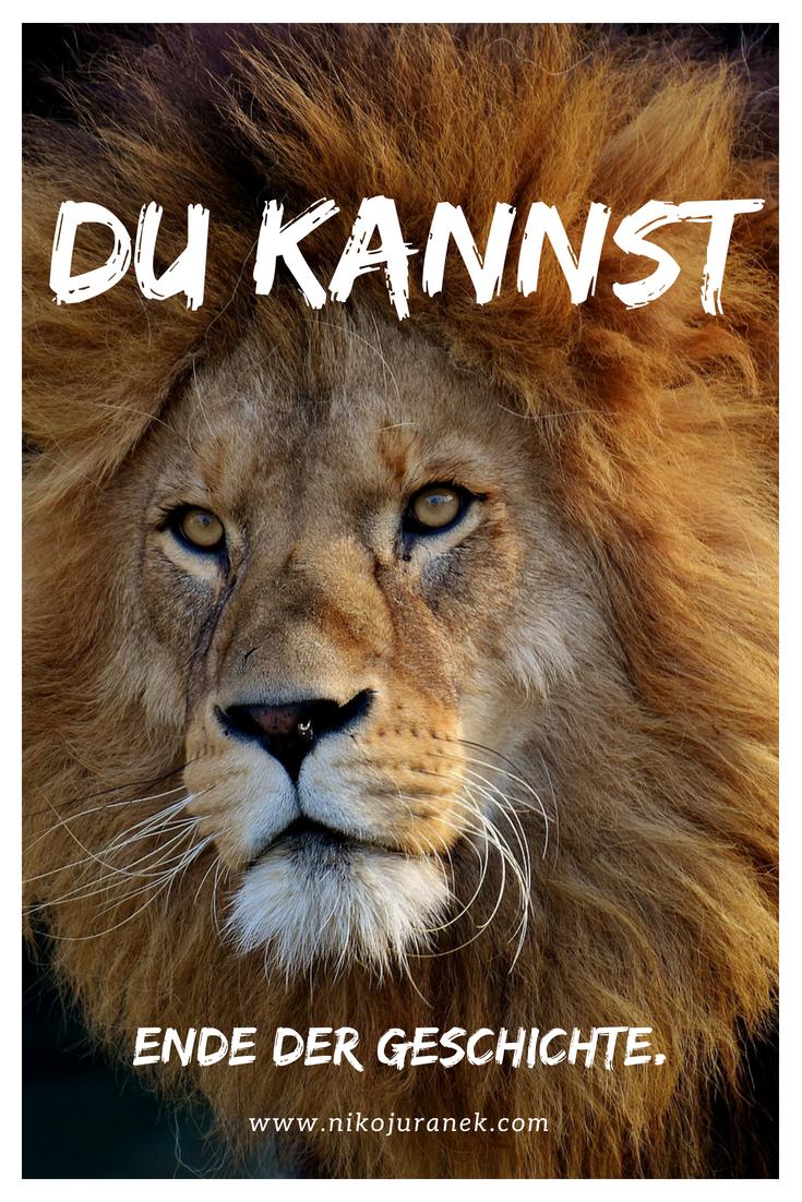 Löwen Sprüche