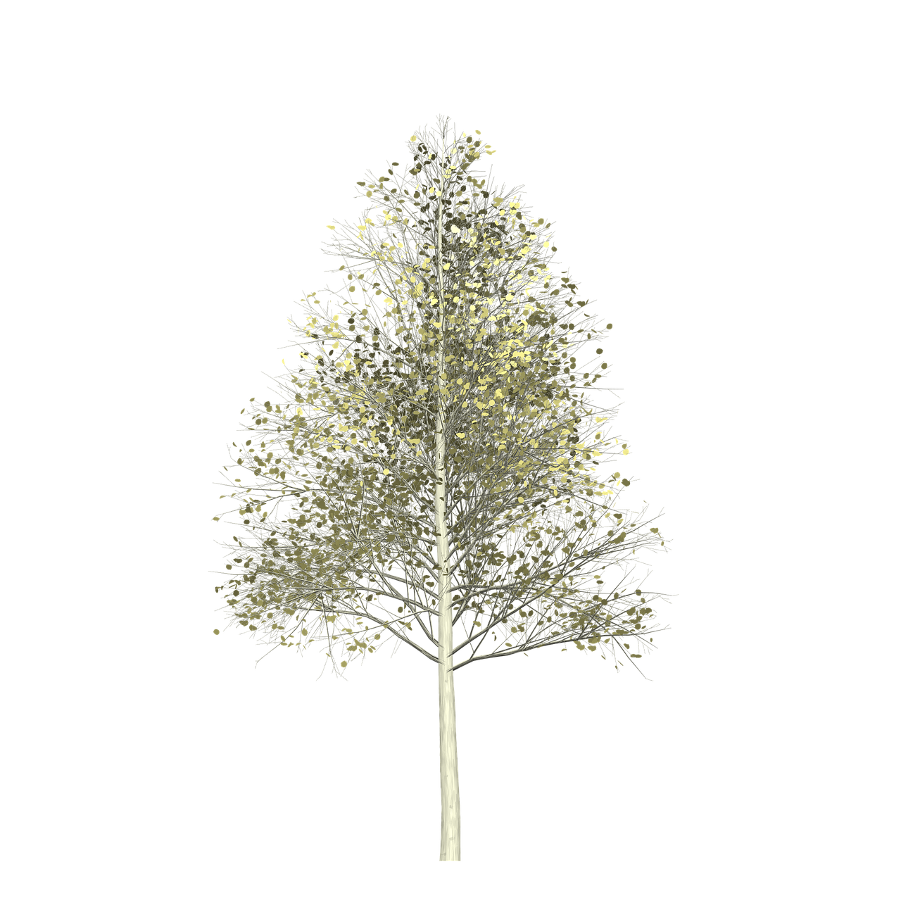 Forest Aspen Tree Painted Tree Nature Yellow Imag Forest Aspen Tree Painted Tree Nature Yellow Im Aspen Trees Painting Aspen Trees Autumn Trees