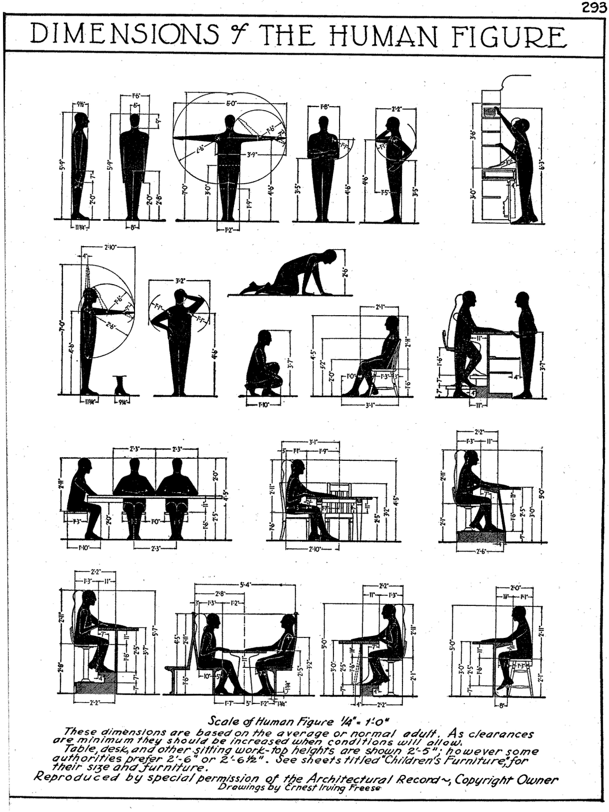 Architectural Drawing Human Figure human measurements, dimensions for the human figure. (workstation