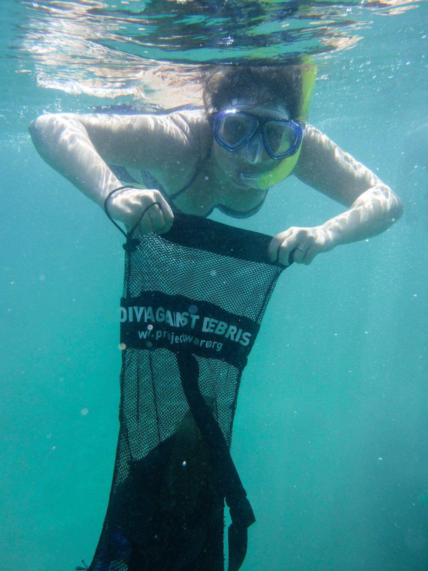 Volunteer With Coral Reefs Workingabroad Volunteer Marine Conservation Caribbean