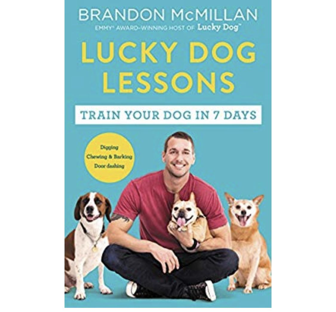 The Celebrity Dog Trainer And Emmy Winning Star Of The Cbs Show