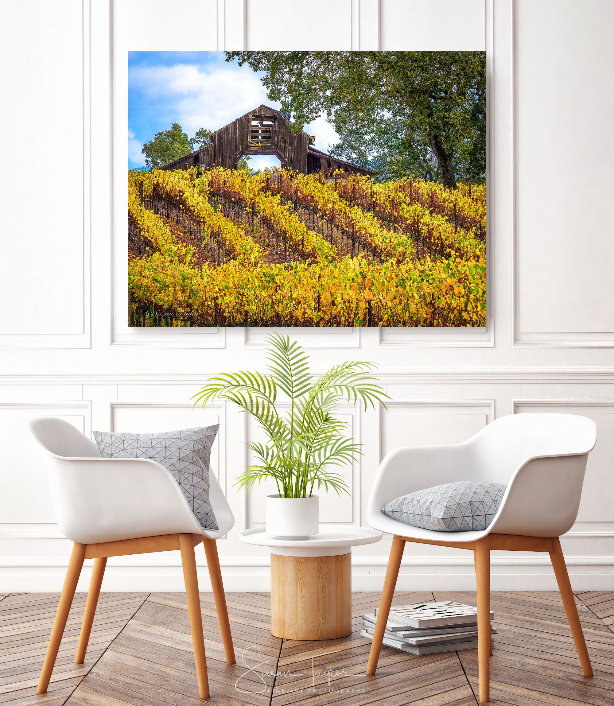 Fall Harvest Art, California Vineyard Photography, Large Sonoma ...