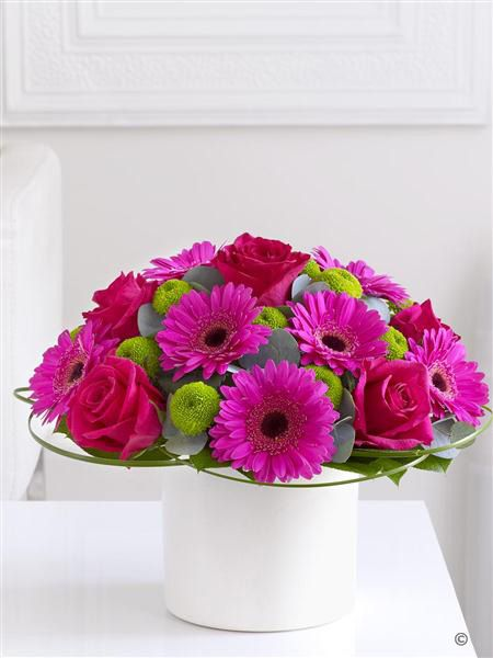 Pink Rose and Germini Arrangement. This magnificent gift is a spectacle of colour presented in striking contemporary style. Radiant shades of cerise take centre stage – but look closer and you'll discover these beautiful green santini chrysanthemums in an exquisite shade of lime green.
