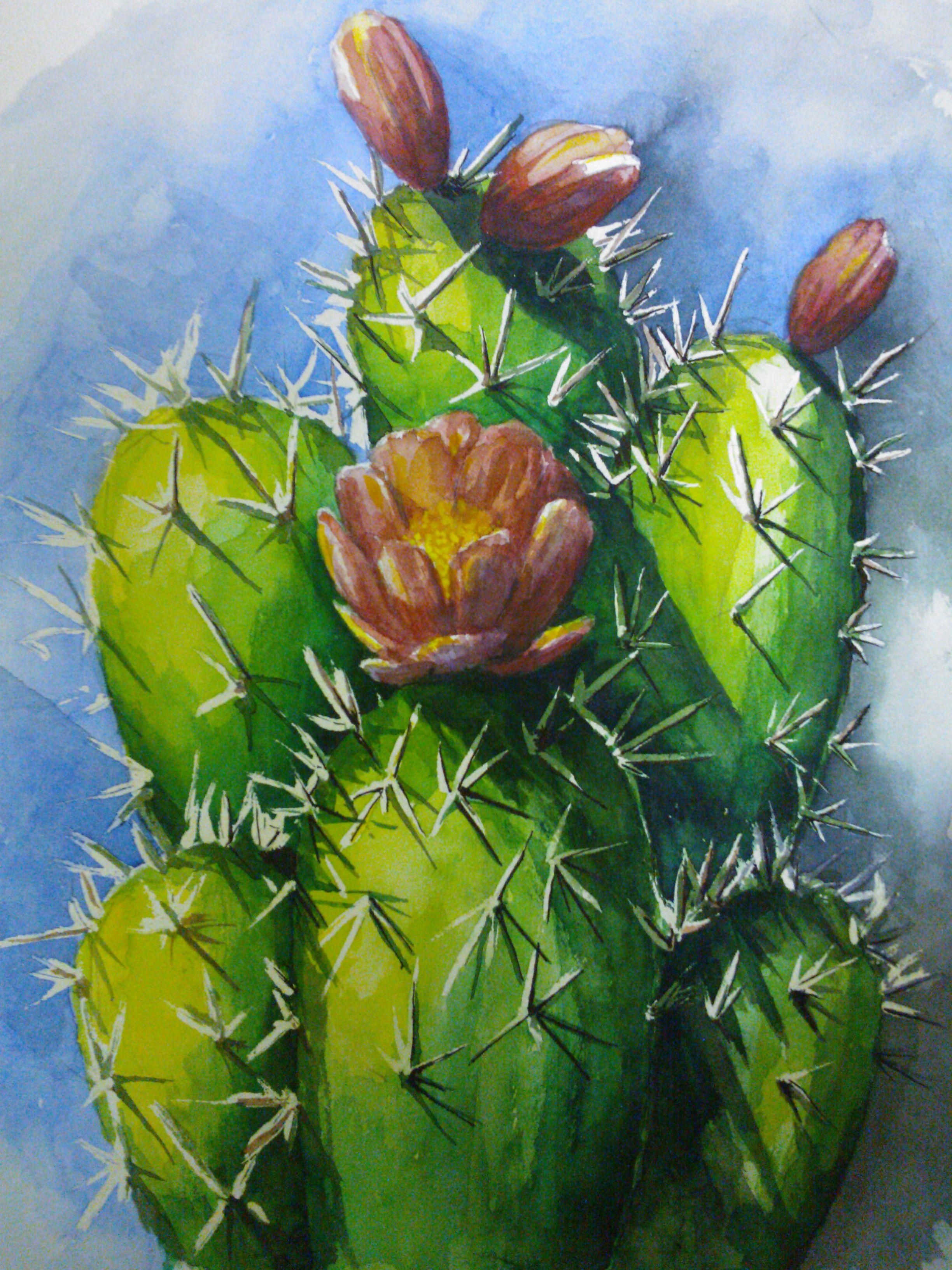 paint+desert+flowering+cactus | Share | maria | Pinterest ...