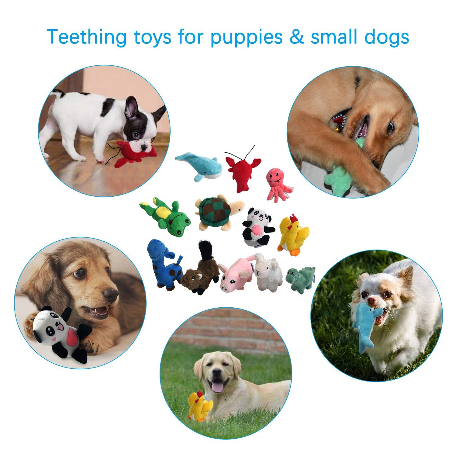 Legend Sandy Squeaky Plush Dog Toy Pack For Puppy Small Stuffed