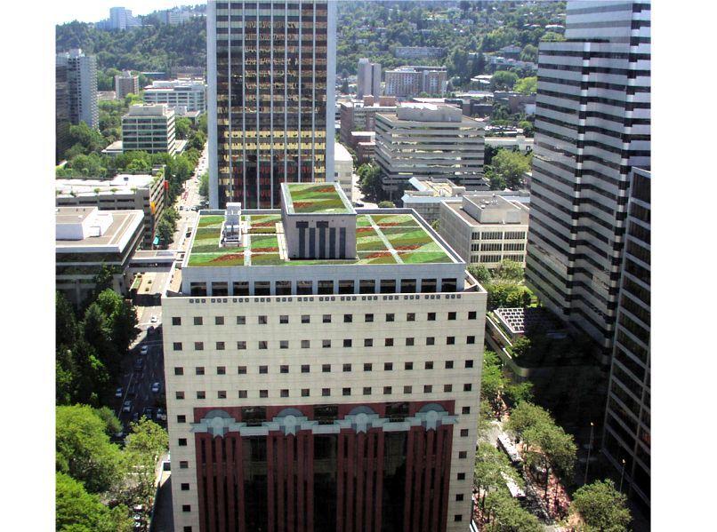 The Portland Building Green Roof Building Urban Heat Island