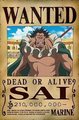 One Piece WANTED Poster (A3: 28 x 43 cm) - SAI | eBay en 2020 | One piece, Poster, One piece ...