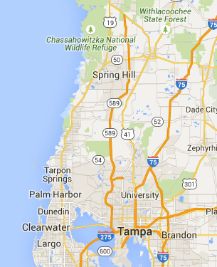 Spring Hill Florida Map.Spring Hill Florida Dog Boarding Pet Sitting Dogvacay Florida
