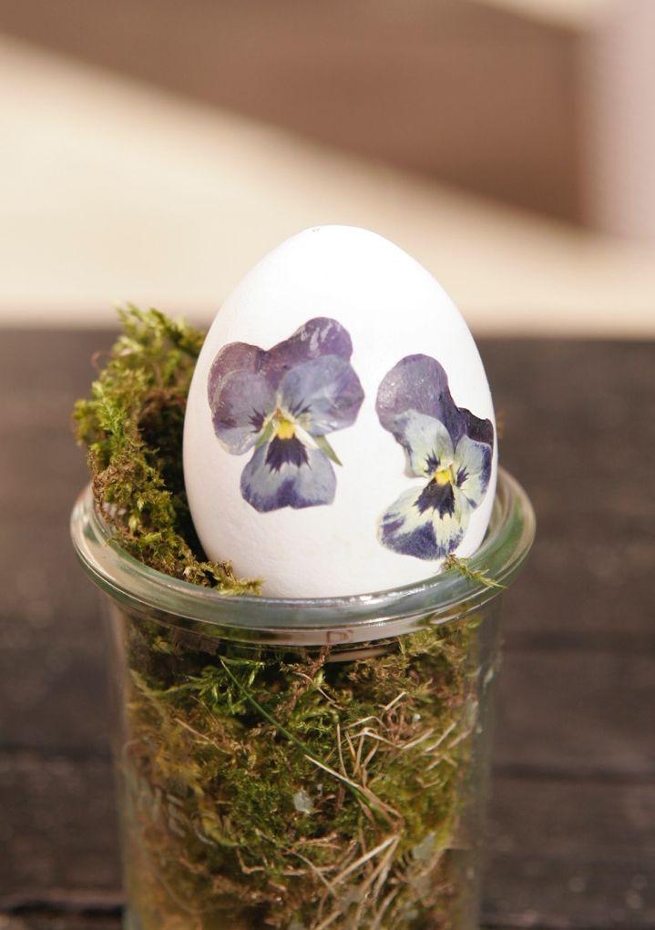 DIY Ostereier mit Hornveilchen dekorieren Garten and Easter