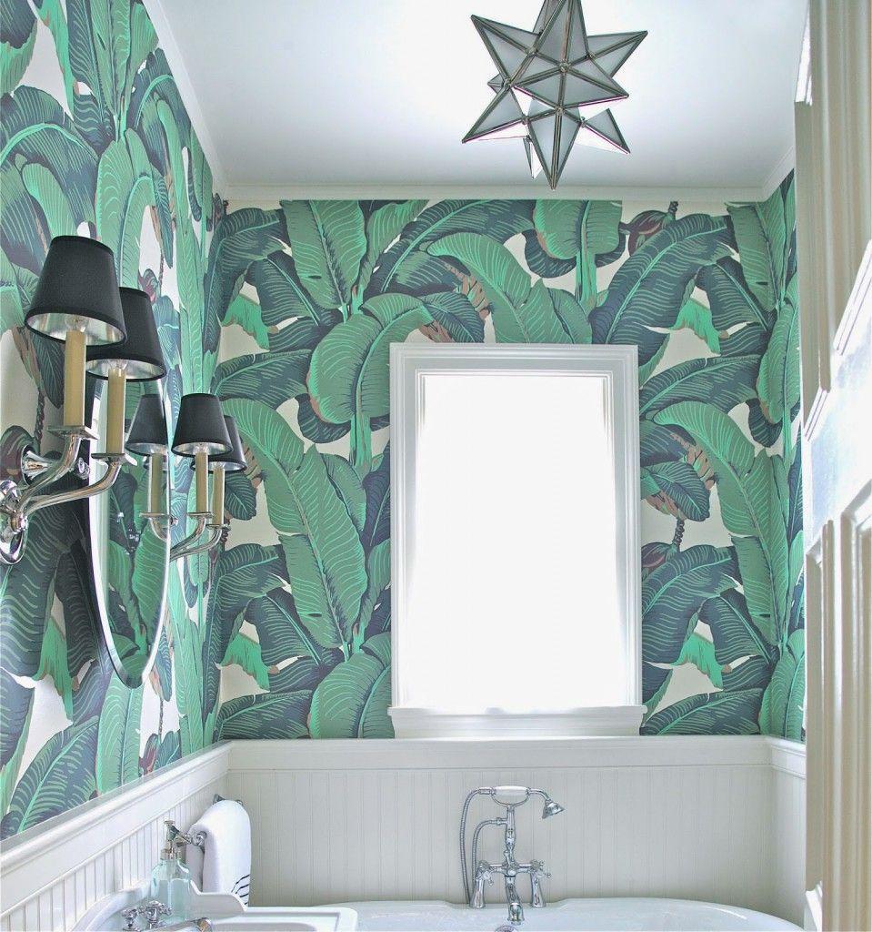 Account Suspended Banana Leaf Wallpaper Leaf Wallpaper Powder Room Wallpaper