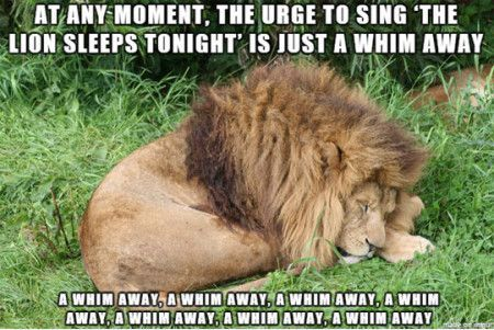 Funny Memes For Friday The Th : Funny memes at any moment the urge to sing the lion check