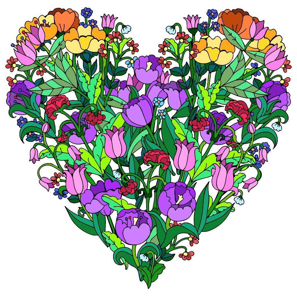 #Colorbynumber | Раскраски, Рисунки, Цветы