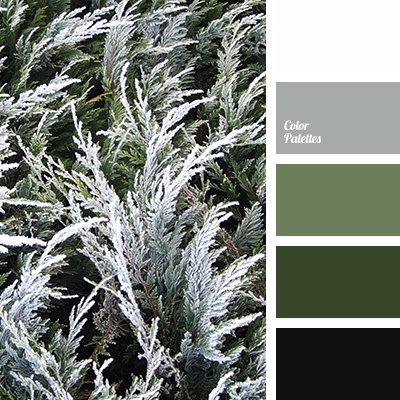 Black Color Match For Design Solution Home Dark Green Greenery Grey Frost Light Olive Shades Of
