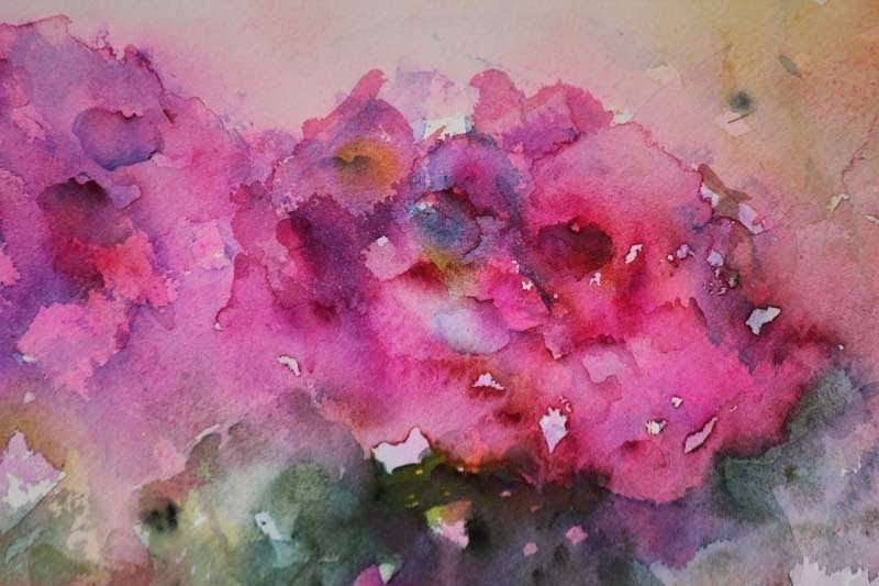 Pink - Close Up Pin - Watercolour by Jean Haines