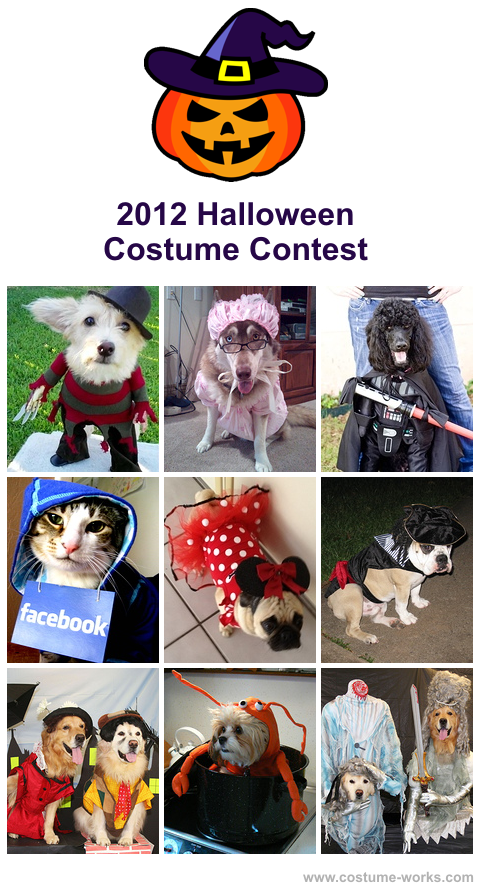 Halloween Costume Contest 2020 Near Me Dog Halloween Costume Contest 2020 | Costume Works | Pet halloween