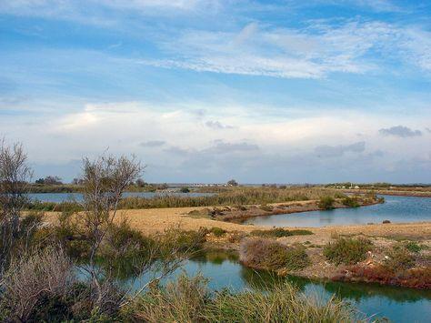 La Camargue Arles Et Les Environs Saintes Maries De La Mer