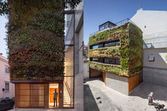 Fachada de casa em Lisboa tem mais de 4,5 mil plantas