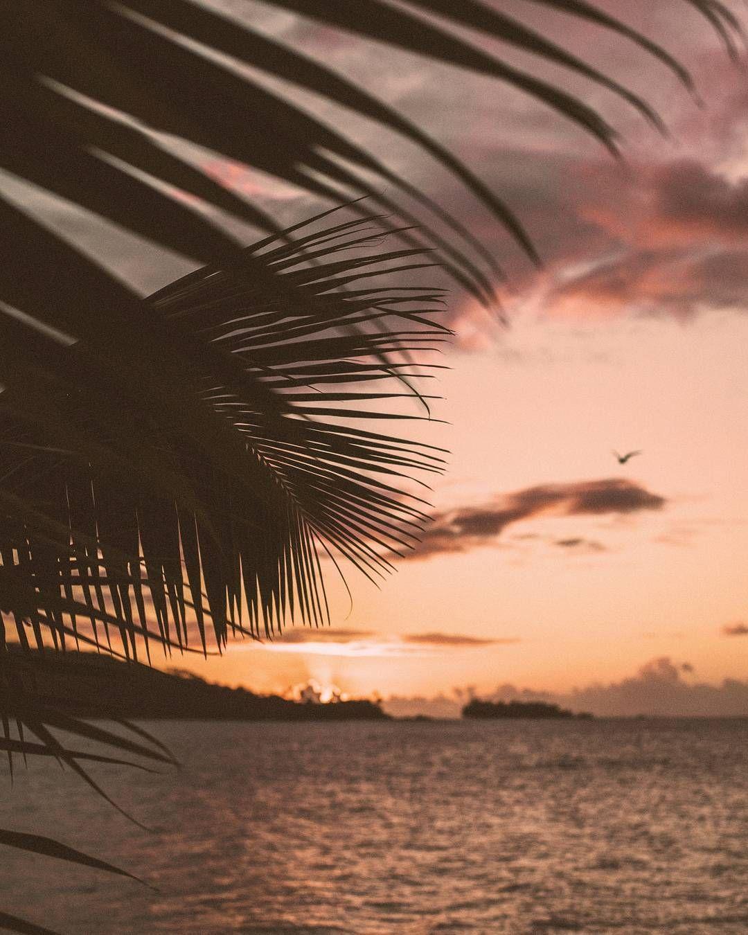 Voyages Responsables En 2020 Photos Voyages Coucher De Soleil Ile Tropicale
