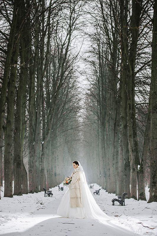 Sajt Vremenno Zakryt Winter Wedding Wedding Wedding Dresses