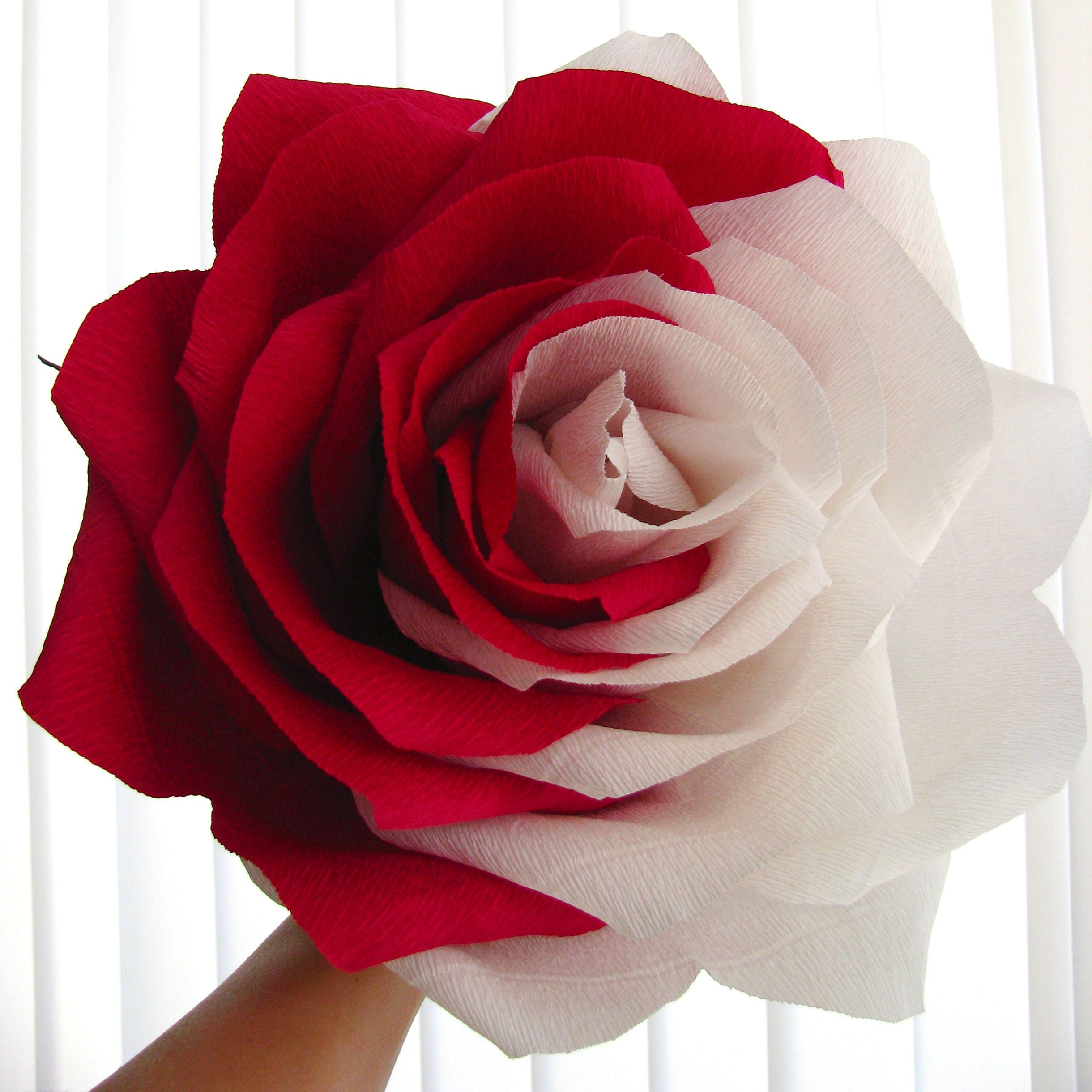 Alice Birthday Party Decor Giant Paper Flower Two Tone Rose Large