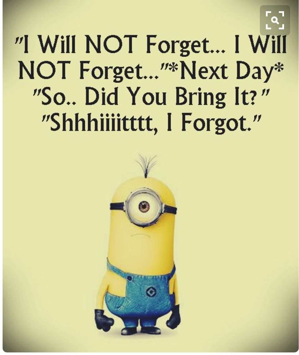 Pin By S Mary On Fun Things Minions Funny Funny Minion Pictures Picture Quotes