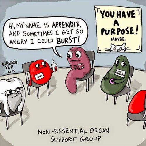 Adult group humor