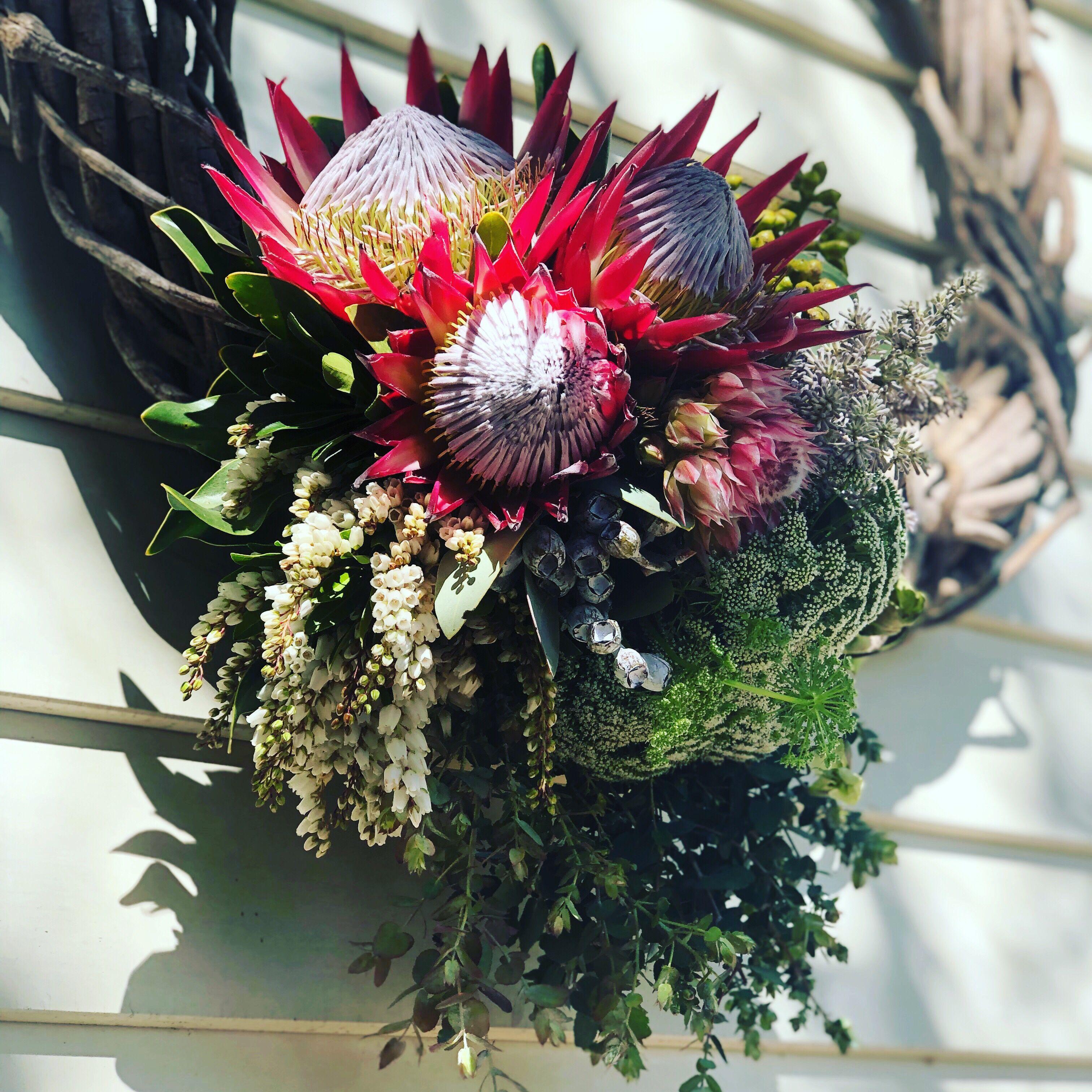 Front door Christmas wreath using Australian Native
