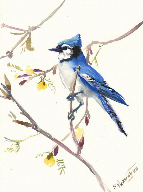 Blue Jay original watercolor painting 12 X 9 in by ORIGINALONLY, $27.00