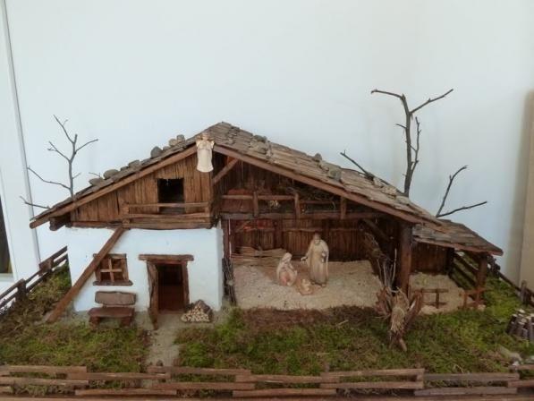 weihnachtsbaum terr rio mini jardins e tradicional. Black Bedroom Furniture Sets. Home Design Ideas