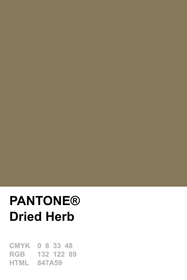 Pantone 2015 dried herb zeleno olive drab dreid herb Sage green pantone