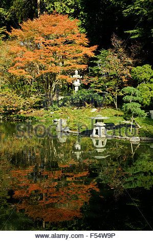 Pond and lanterns in Nitobe Memorial Garden, a traditional Japanese ...