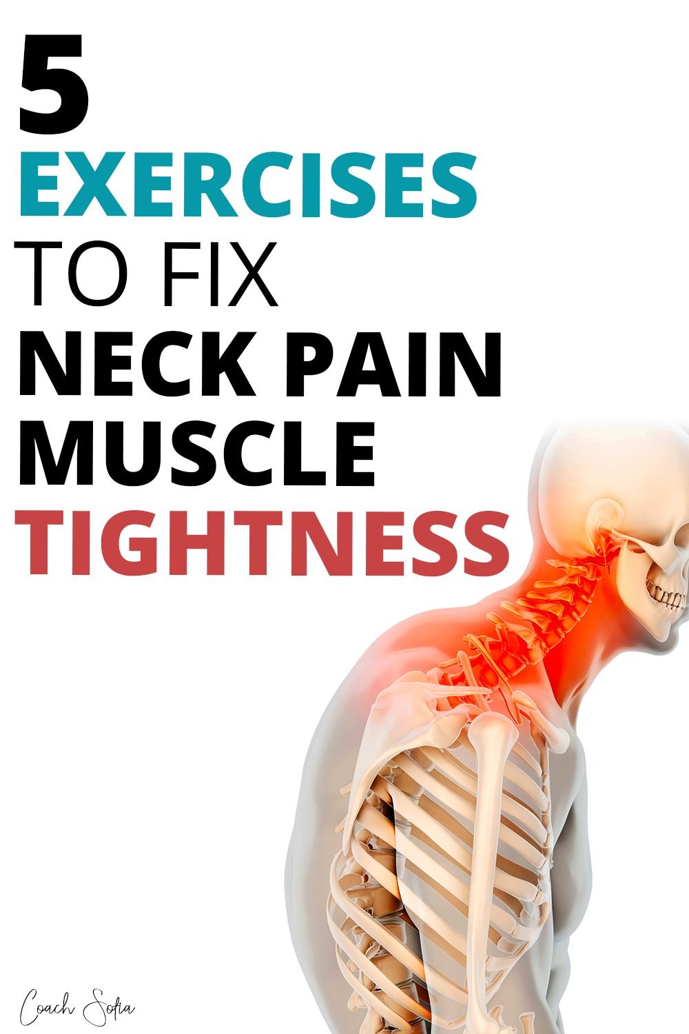 33+ How to fix straight neck spine ideas