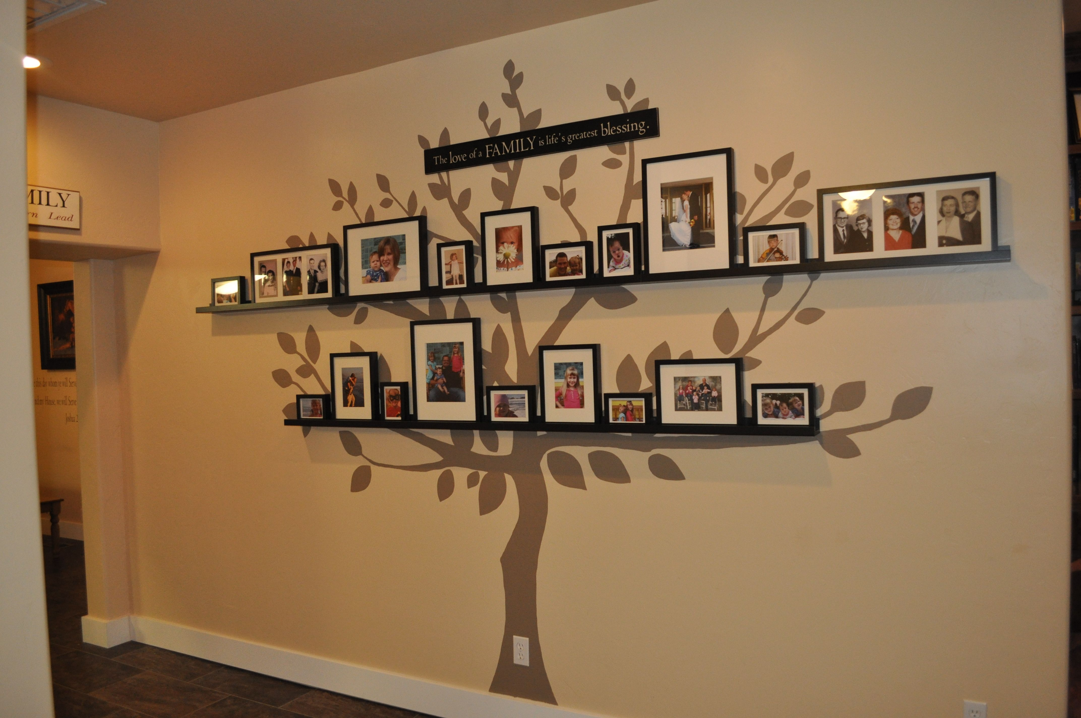 Family Tree Photo Wall In My House Tree Designed And