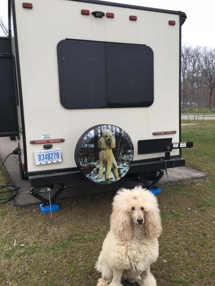 Custom Spare Tire Cover With Poodle On A Camper Custom Tire