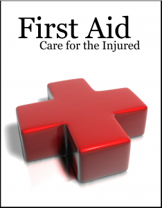 You may need to know how to do it httpsuccessfulstudent20 free printable pdf first aid booklet thorough and source cited may need to verifyupdate areas but good info nevertheless fandeluxe Gallery