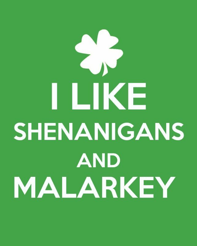 That s a bunch of blarney or at least this blog is for Funny irish sayings for st patrick day