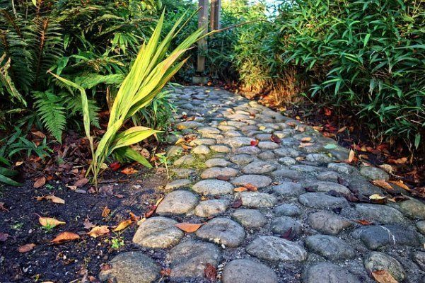 Stone Walkway To The Front Door of Your Home #walkwaystofrontdoor Stone Walkway To The Front Door of Your Home #walkwaystofrontdoor Stone Walkway To The Front Door of Your Home #walkwaystofrontdoor Stone Walkway To The Front Door of Your Home #walkwaystofrontdoor Stone Walkway To The Front Door of Your Home #walkwaystofrontdoor Stone Walkway To The Front Door of Your Home #walkwaystofrontdoor Stone Walkway To The Front Door of Your Home #walkwaystofrontdoor Stone Walkway To The Front Door of You #walkwaystofrontdoor