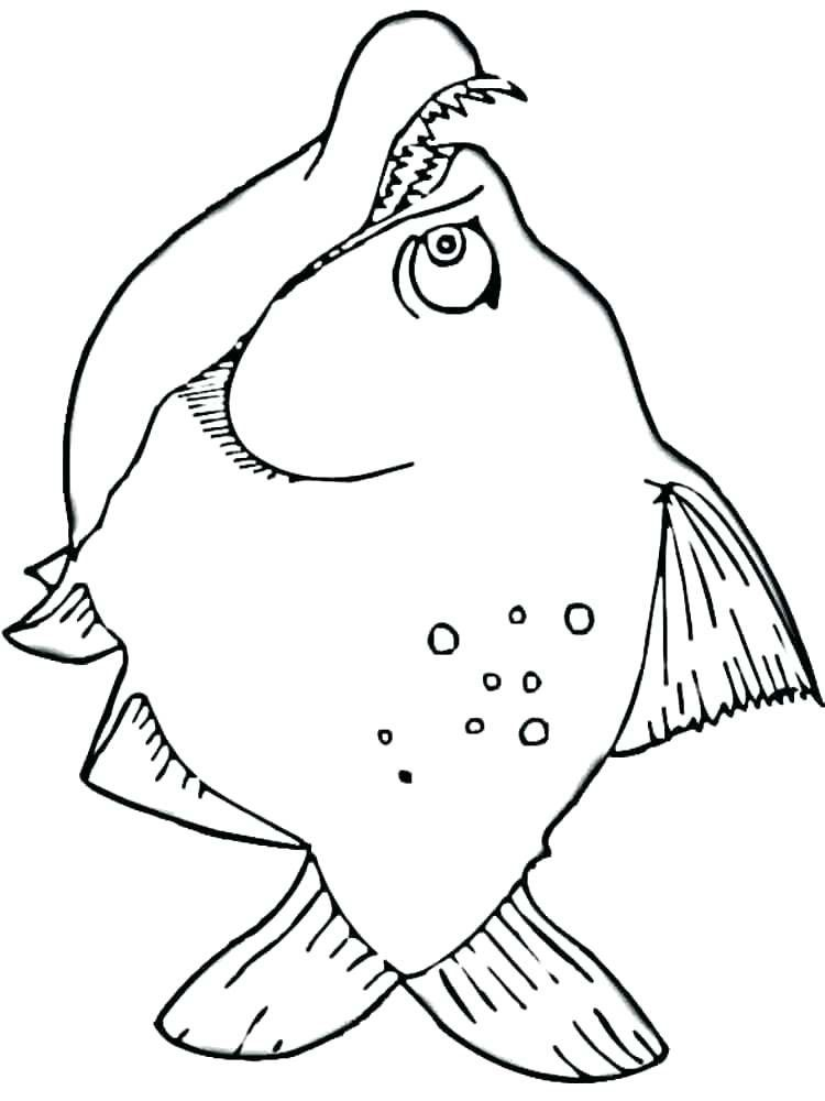 Lion Fish Coloring Page Youngandtae Com In 2020 Fish Coloring Page Lion Fish Lion Coloring Pages