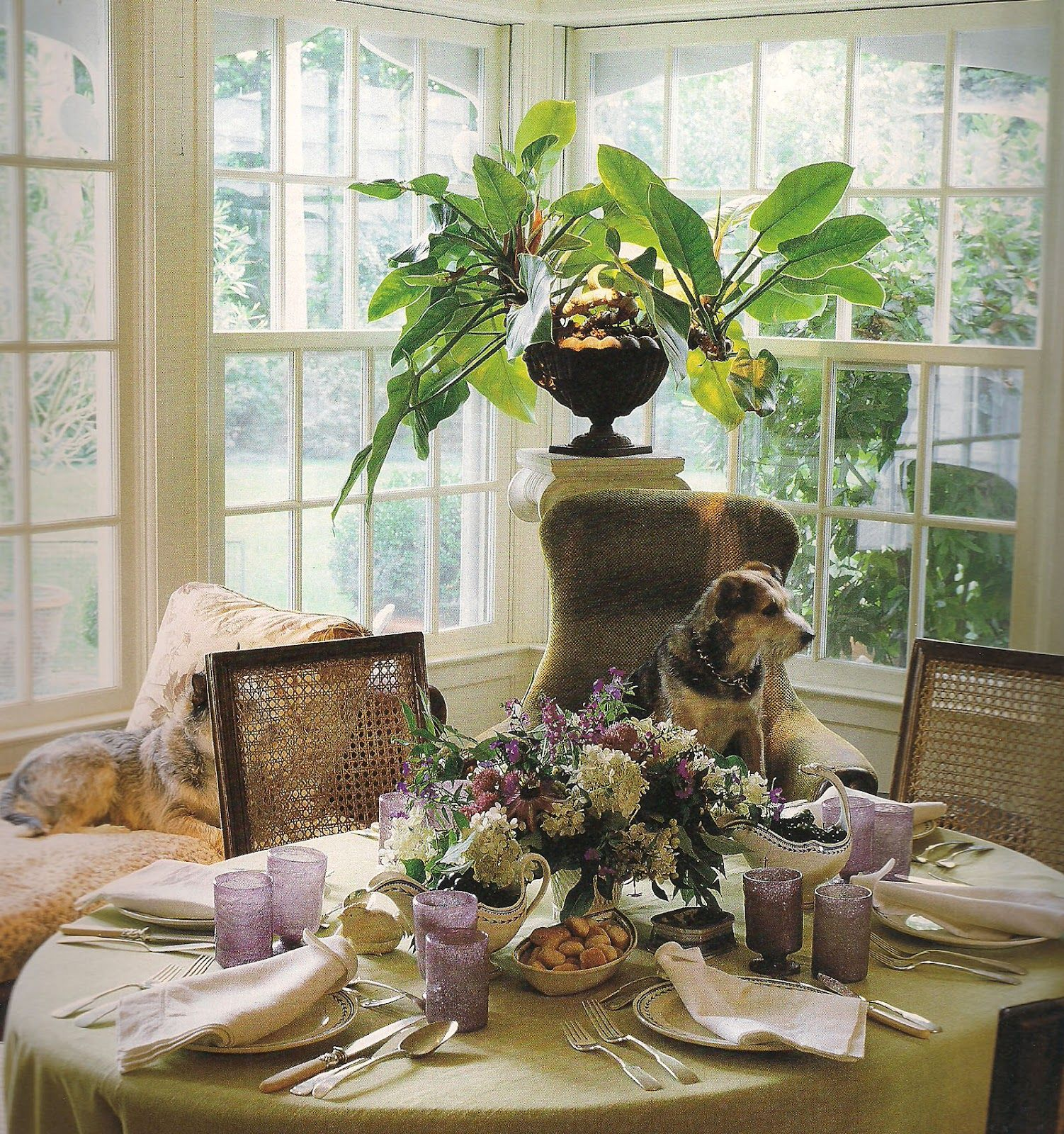 bunny williams connecticut kitchen decorated with dogs vanishing rh pinterest com
