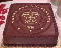 Google Image Result for http://www.cakepicturegallery.com/d/1946-2/Texas%2BA_amp_M%2BGrooms%2BCake.jpg