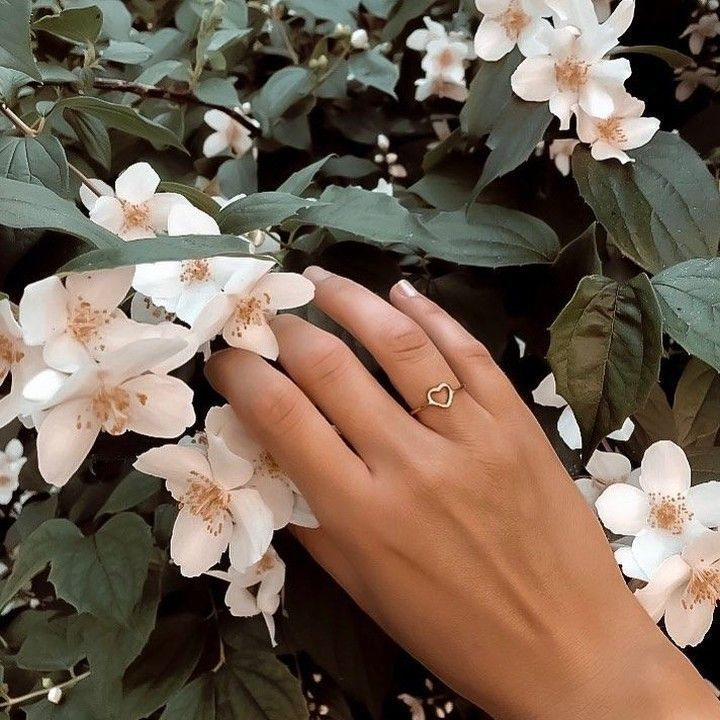 @happinessbtq posted to Instagram: We heart @conn_ie_ as our #happinessfeatureoftheday! 💖 {ref. #ring FRR161}  Tag #happinessbtq and @happinessbtq for a chance to be featured.   ______________________ #nature #naturelover #travel #adventure #beautiful #flowers #fashionblogger #instablogger #styleblogger #jewelry #jewellery #jewelrygram #instajewelry #gold #heart #heartring #fashionpost #accessories #womensaccessories #fashionaccessories #womenstyle #fashion #style #happinessbt