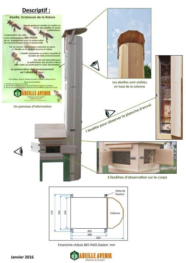 bee pass une ruche dans votre jardin ar c l k sanati. Black Bedroom Furniture Sets. Home Design Ideas