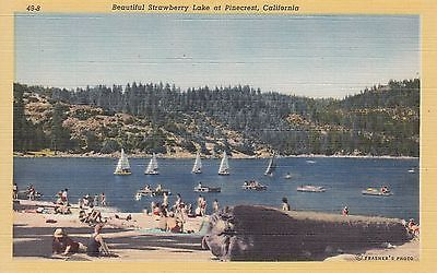 Strawberry Lake Pinecrest Tuolumne County California Vintage CA Linen Postcard