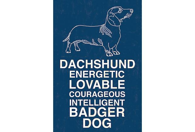 {Dachshund, Blue} gallery-wrapped canvas. love this!
