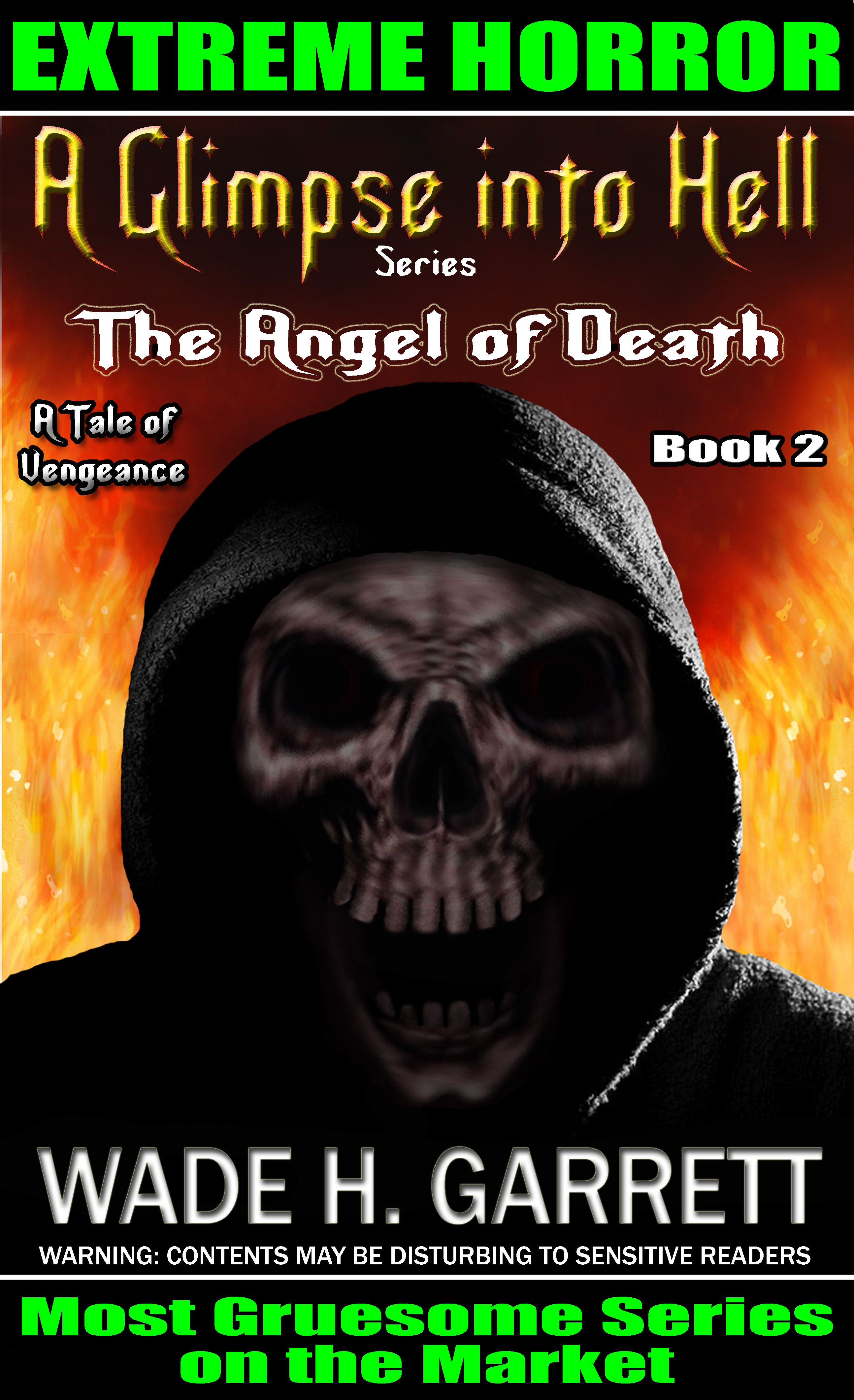 The Angel of Death book